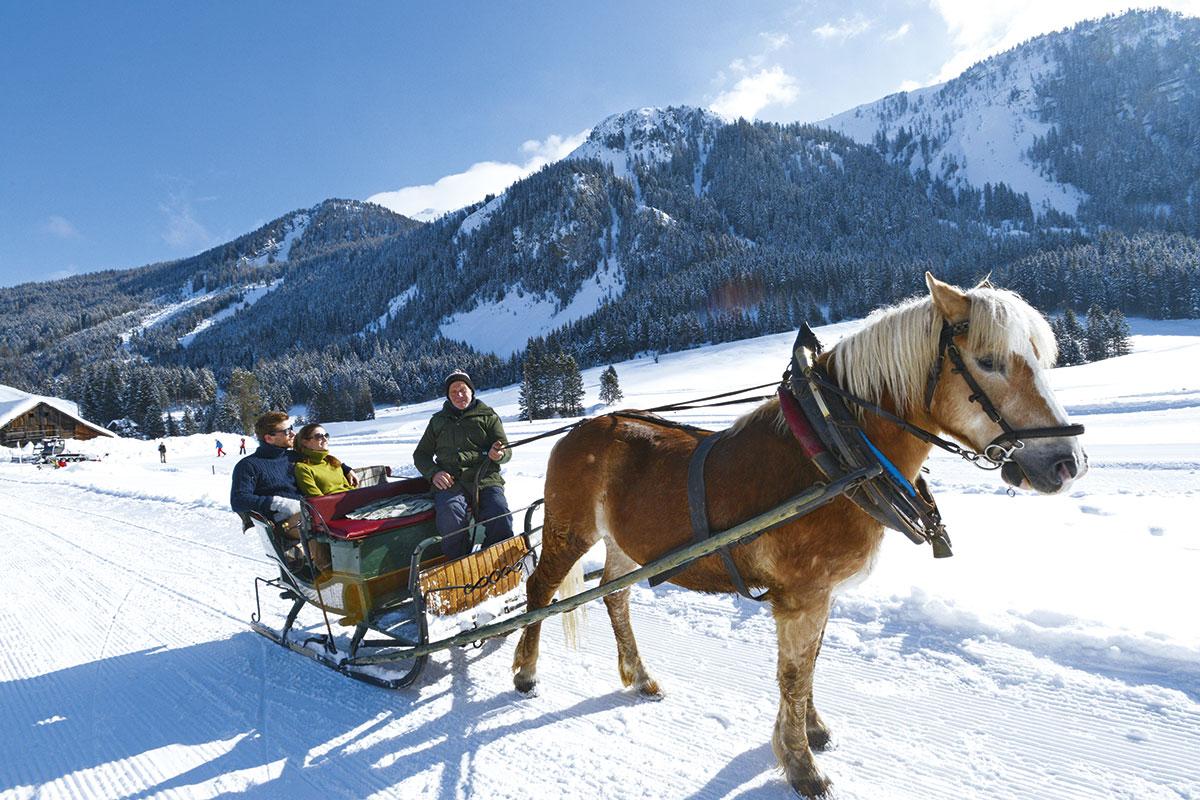 Pferdeschlittenfahrten in Radstadt - Winterurlaub am Meierlgut