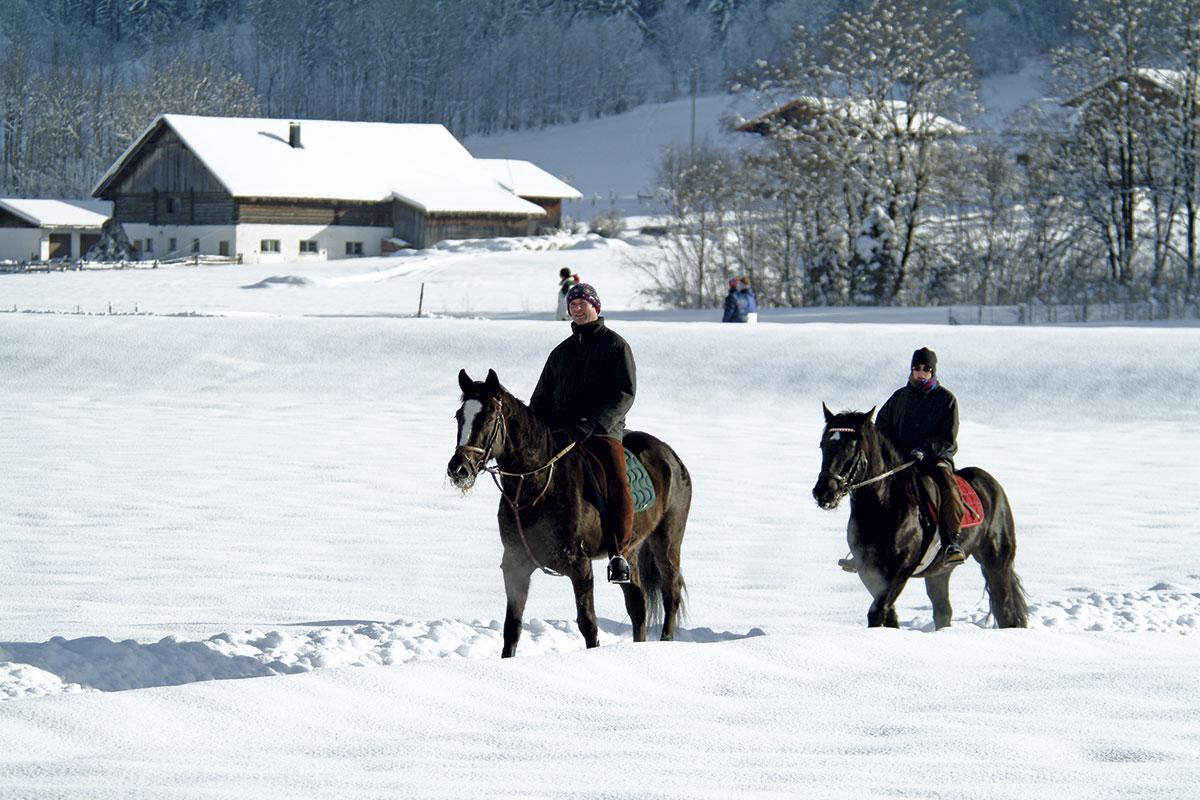 Winterreiten in Radstadt - Meierlgut